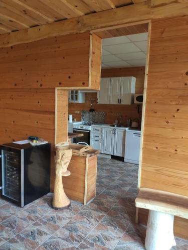 Kuchyň nebo kuchyňský kout v ubytování Penzion Loučka Bystřice