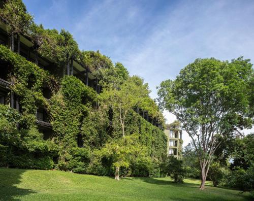 A garden outside Heritance Kandalama
