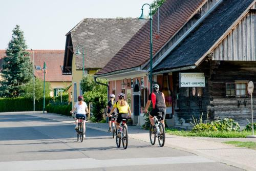 Biking at or in the surroundings of Hotel Pendl