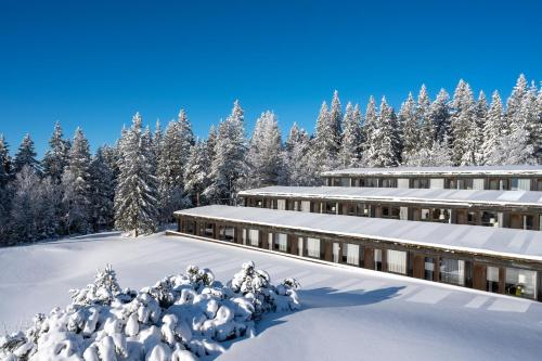 Voksenasen Hotell; Best Western Signature Collection during the winter