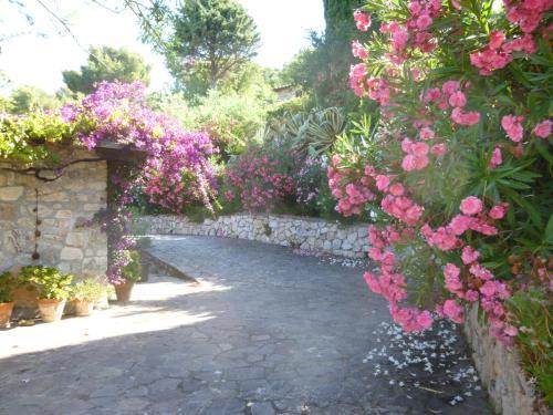 Giardino di Villa Mimare