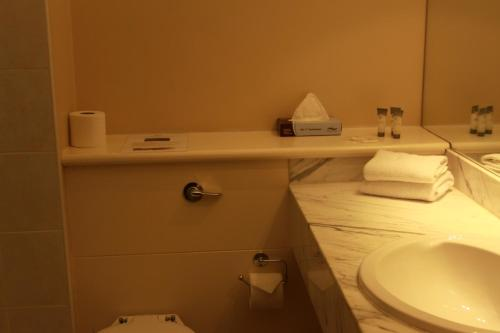 A bathroom at Celtic Ross Hotel & Leisure Centre