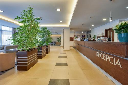 Lobby/Rezeption in der Unterkunft Hotel Panorama Resort