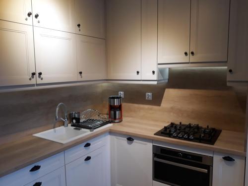 Kuchnia lub aneks kuchenny w obiekcie DorJan - Pokoje i domki