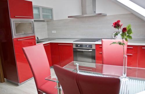 Kuchyň nebo kuchyňský kout v ubytování Vila Hedvika
