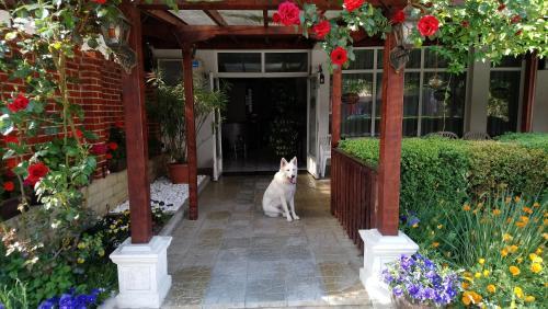 Victoria Family Hotel Balchik, Bulgaria