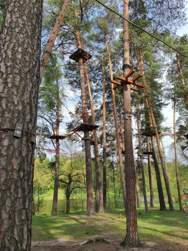 Сад в Family Home Forest Escape