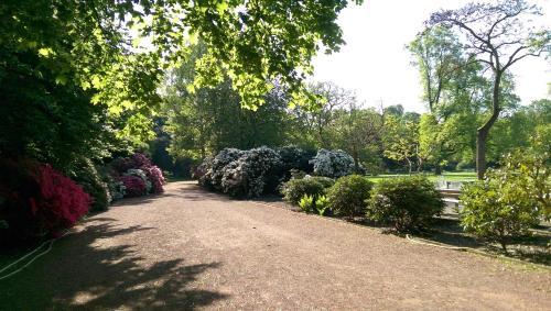 A garden outside Congress Hotel am Stadtpark