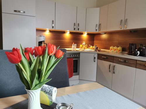 A kitchen or kitchenette at Ferienhaus Lieblingsplatz Schleiz