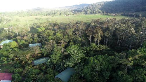 A bird's-eye view of Finca Amistad Cacao Lodge