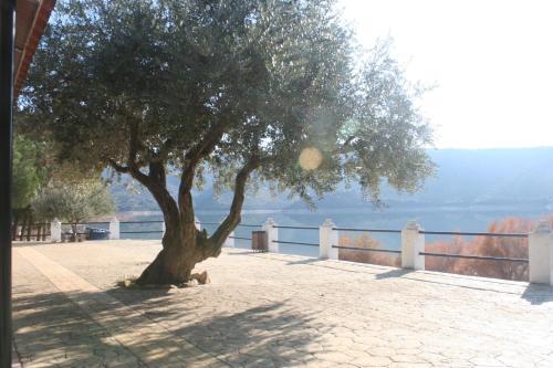 Playa de o cerca de este albergue