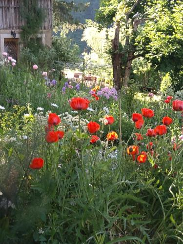 A garden outside La Combe fleurie