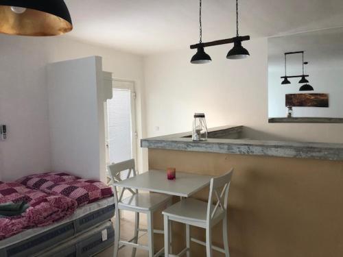 Kuchyňa alebo kuchynka v ubytovaní Apartmán Prievidza - Bojnice
