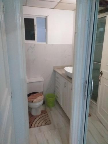 A bathroom at Cozy Waterloo Apartment
