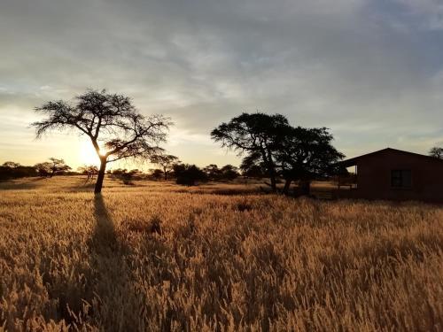 Jansen Kalahari Guest Farm
