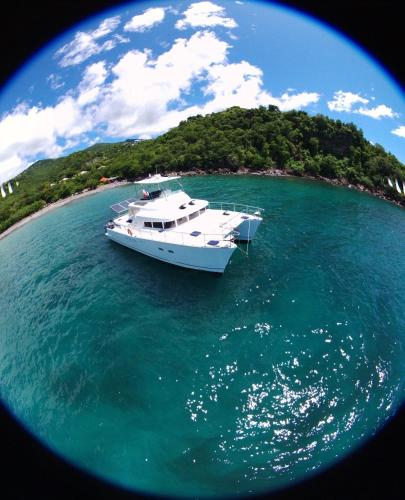 Catamaran moteur