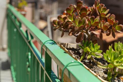 Balcone o terrazza di B&B Pietra Luce