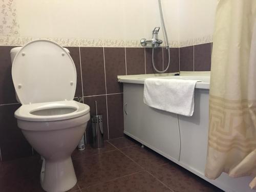 A bathroom at Dinastiya