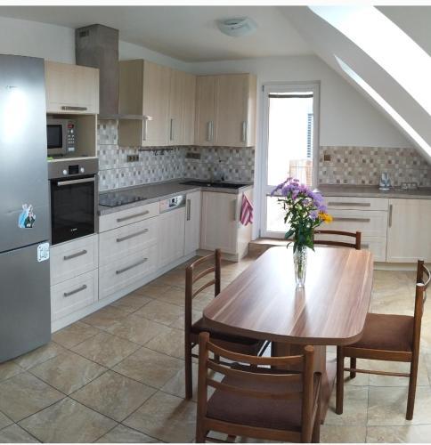 Kuchyň nebo kuchyňský kout v ubytování Apartmán u Lesíku v rodinném domě