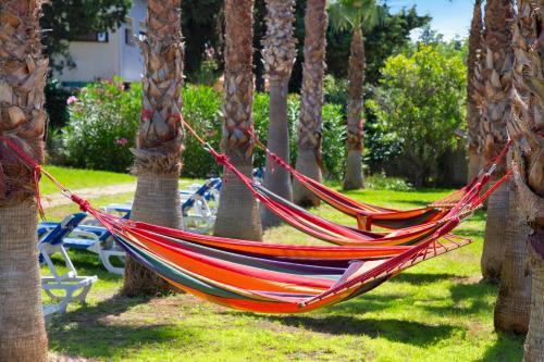 Jardín al aire libre en Aparthotel Carrio Sol - Monty´s