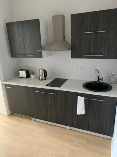 Köök või kööginurk majutusasutuses Rohuaia Apartments