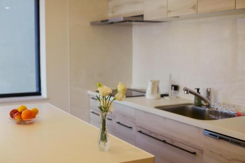 Grand Phenix Hakuba - Vacation STAY 85036にあるキッチンまたは簡易キッチン