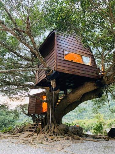 Kamisatu Treehouse