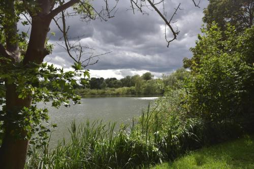 Blick auf einen Fluss in der Nähe der Ferienwohnung