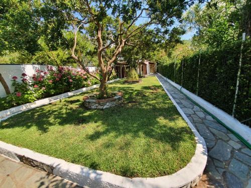 A garden outside Dionisos Studios and Apts Skiathos