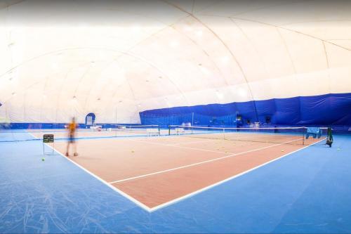 Теннис и/или сквош на территории Гостиница Дубки или поблизости