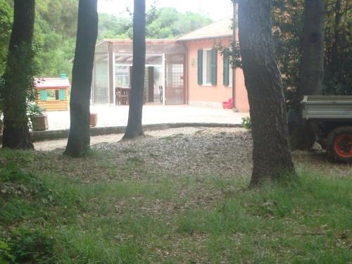 "A garden outside Agriturismo ""La Rosa Canina"""