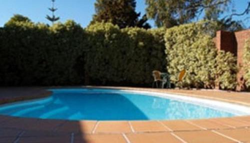 The swimming pool at or near Nunawading Motor Inn