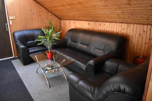 Lounge nebo bar v ubytování Hotel Boršičanka