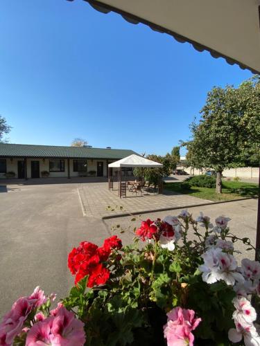 Сад в Гостиница Колос