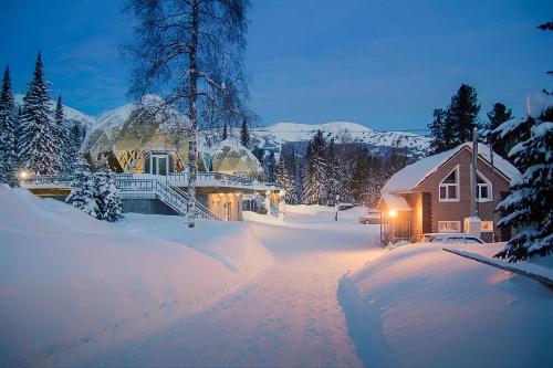 Гостиница Golden Palace зимой