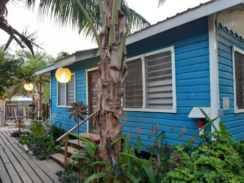 A porch or other outdoor area at The Funky Dodo Backpackers Hostel