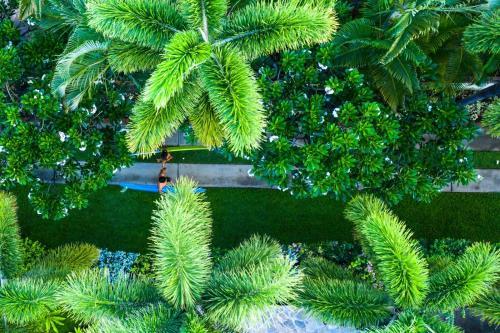A garden outside The Kulani Maui