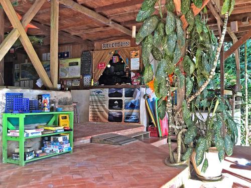 Zona de juegos infantil en Cascada Verde Hostel