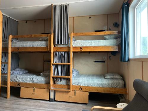 A bunk bed or bunk beds in a room at Jasper Downtown Hostel