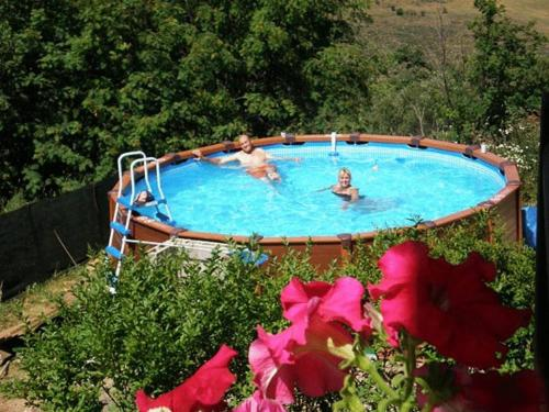 The swimming pool at or near Niu Dels Falcons