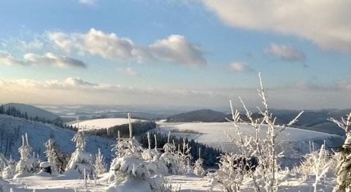 Wittgensteiner Landhaus Winterberg during the winter
