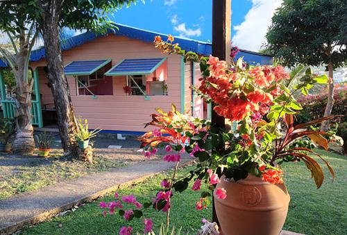 Cottage Top of the Hill Rodney Bay