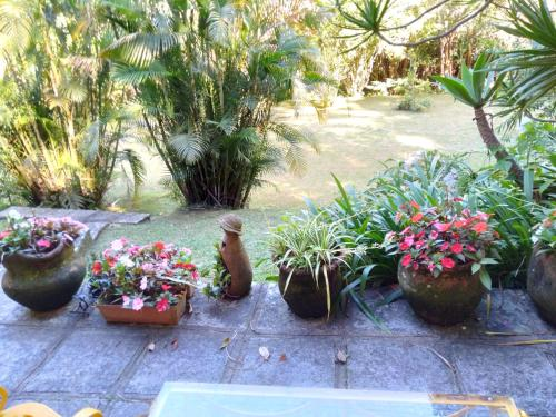 Um jardim em Bromélia Sabiá & Cia