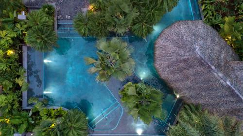 A view of the pool at Tabacón Thermal Resort & Spa or nearby