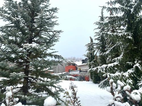 Villa iacca en invierno