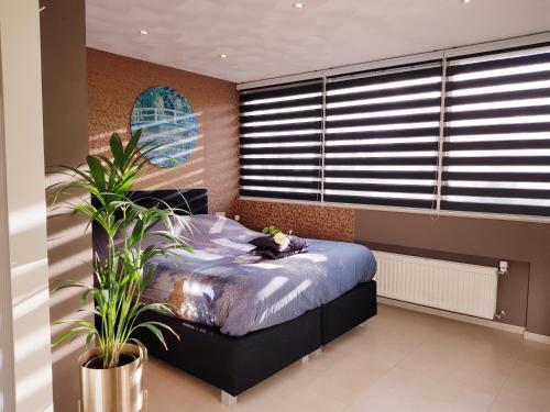 Een bed of bedden in een kamer bij Dishoek