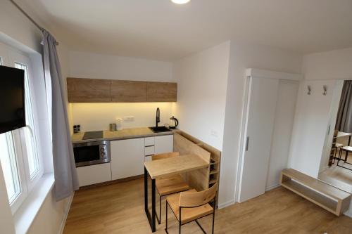 Kuchyň nebo kuchyňský kout v ubytování luxusní apartmány vila Adéla