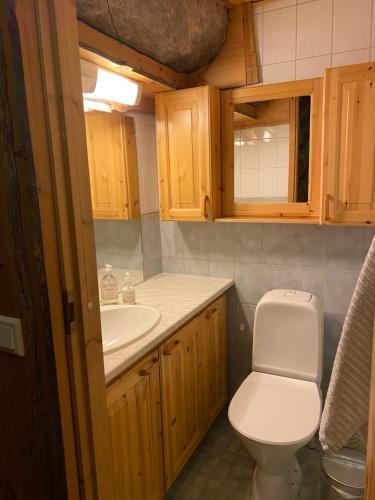 Kylpyhuone majoituspaikassa Levi Log Cabin - Viprakka 4A
