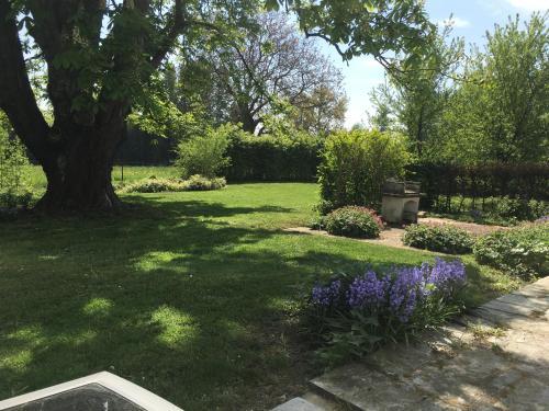 A garden outside La douceur de vivre