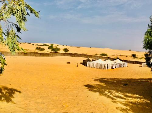 AFRICA ROOTS DESERT